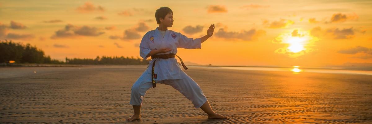 Karate, Dziudo