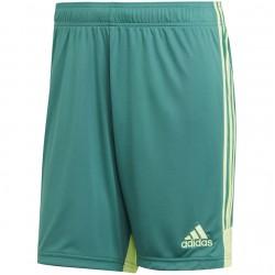 Futbolo šortai adidas Tastigo 19 Shorts DP3251