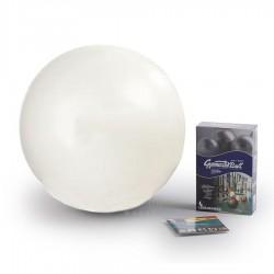 Gimnastikos kamuolys Original Pezzi Gymnastik Ball Maxafe 65 cm White