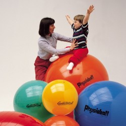 Gimnastikos kamuolys Original PEZZI Physioball 105cm Geltonas