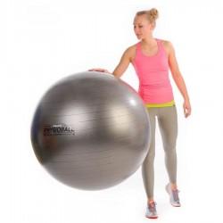 Gimnastikos kamuolys Original