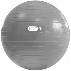 Gimnastikos kamuolys Profit 75 cm su pompa DK 2102