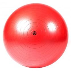 Gimnastikos kamuolys Reebok Men's Tr. Gymball 75 cm, raudonas