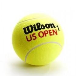 Teniso kamuoliukai WILSON US OPEN 3 vnt