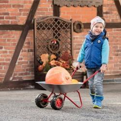 Vaikiškas Metalinis Vežimas ''Rolly Toys'' su dviejais ratais